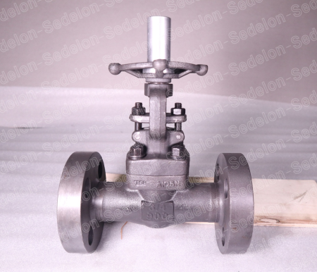 Sedelon Valves with Stem Protector