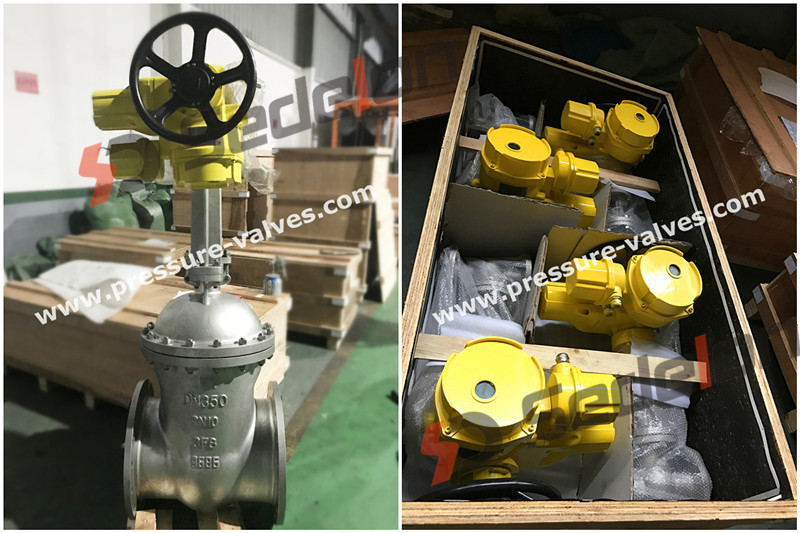 Motorized Valve Manufacturer in China --- SEDELON®