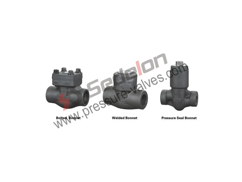 Forged Steel Swing Check Valve