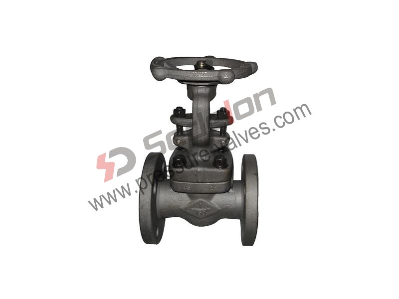 Flanged End Forged Gate Valve