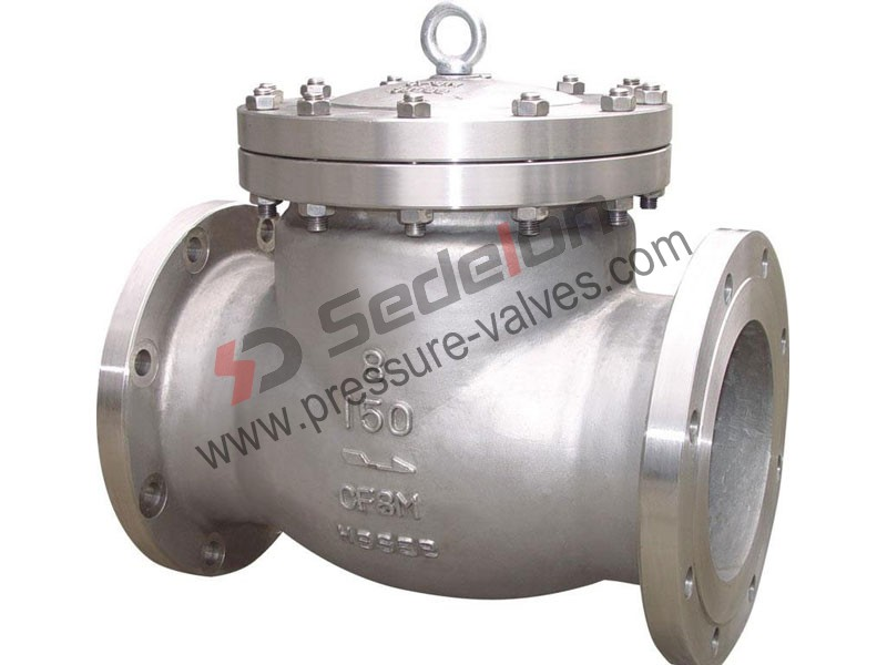 Special Alloy Check Valve
