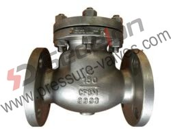 Cryogenic Check Valve