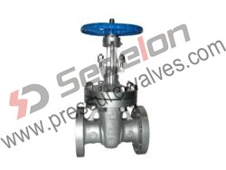Special Alloy Gate Valve